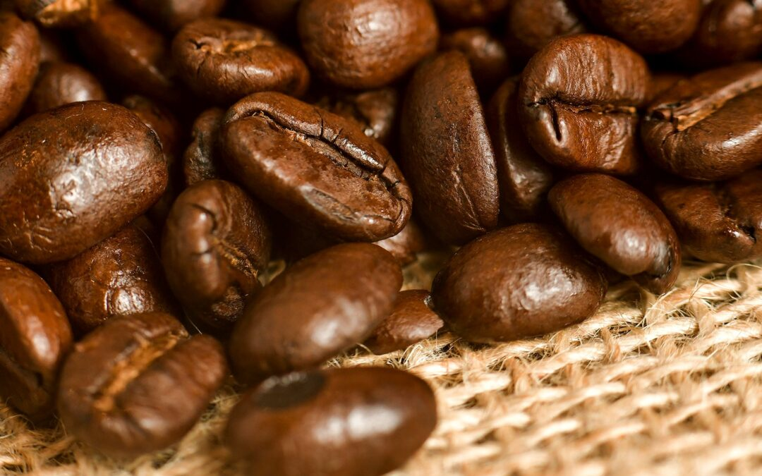 The Impact of Waste Coffee Grounds