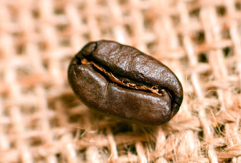 Extracting the perfect coffee flavour
